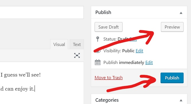 You can either preview or publish your post
