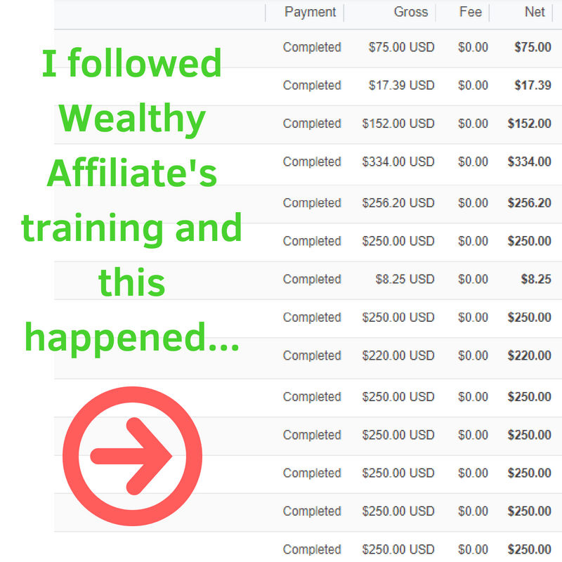 I followed Wealthy Affiliate's training and this happened...