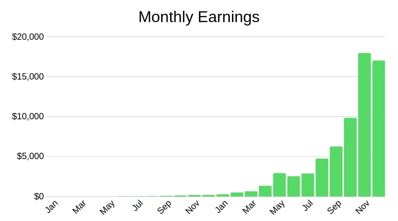 Affiliate marketing monthly earnings example